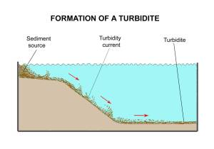 FIGURE 4. Process of turbidite formation. Turbidites are only formed under water. In this illustration a mud source to the left, flows down the slope towards the right as a turbulent density current. As it settles to the right, different turbidite configurations can be formed, usually consisting of several to many layers.