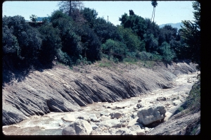 FIGURE 3. Layers of turbidites above Santa Paula Creek, near Santa Paula, California. Each turbidite, which consists of several layers, is in the decimeter thickness range, and was laid down by a single turbidity current.